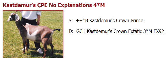 GCH KASTDEMUR'S CPE NO EXPLANATION